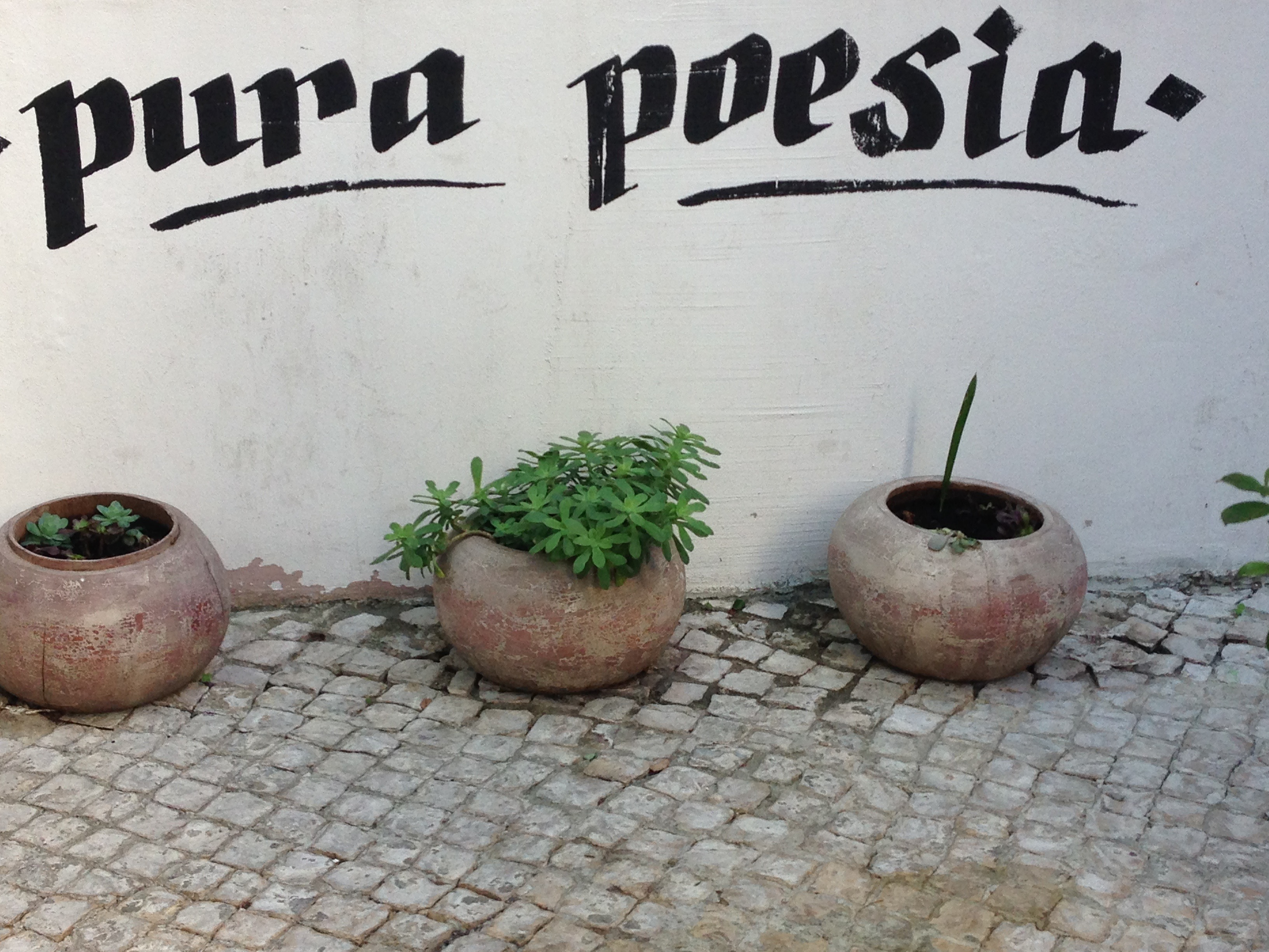 tl_files/themes/default/images/Susanne/pura poesia.jpg